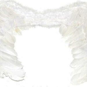 Andělská křídla 33x51 cm