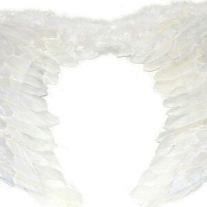 Andělská křídla velká